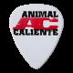 Animal Caliente