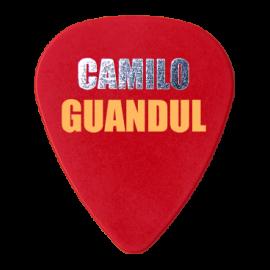 Camilo Guangul