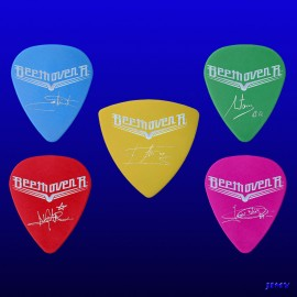 Custom picks Beethoven R