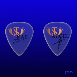 Custom Picks Tierra Santa